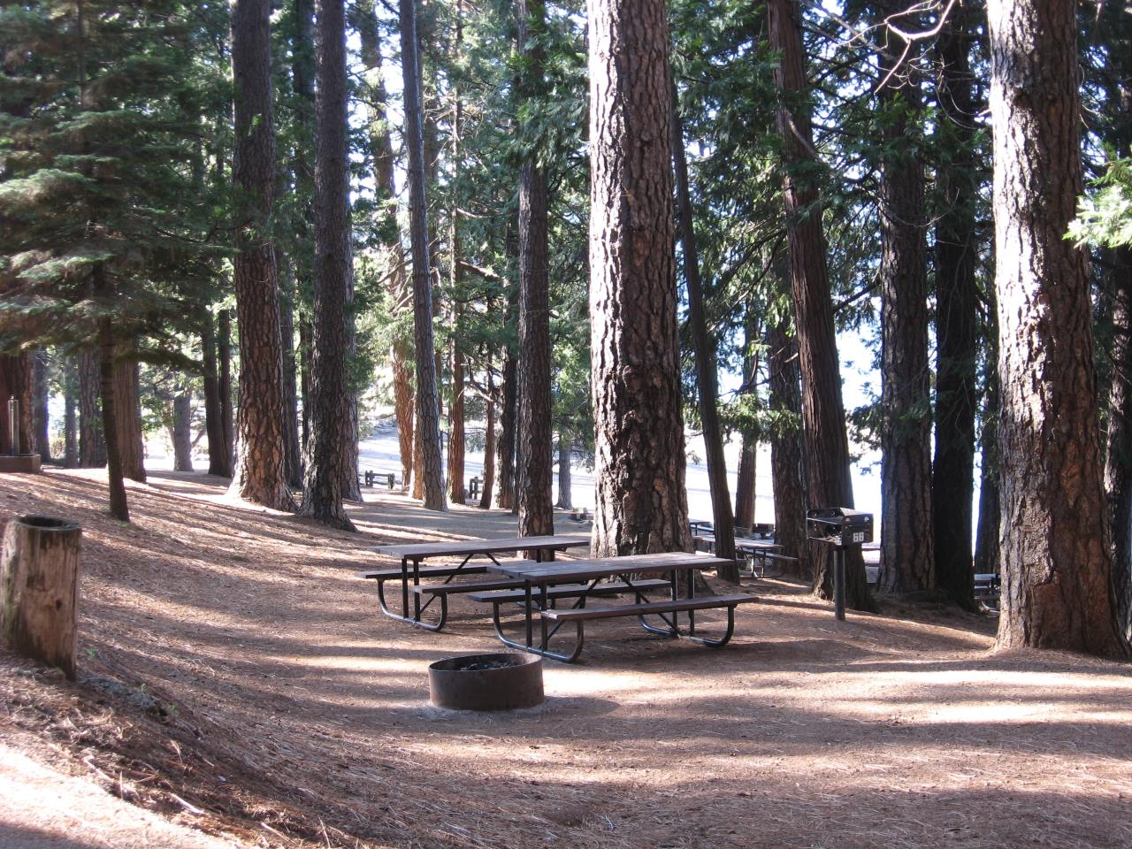 Sierra Spur site #66 - 1 vehicle, tent only - shade, gentle slope