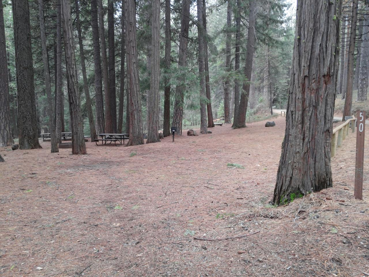 Sierra Spur site #50 - 2 vehicles, 24' MH - shade, level