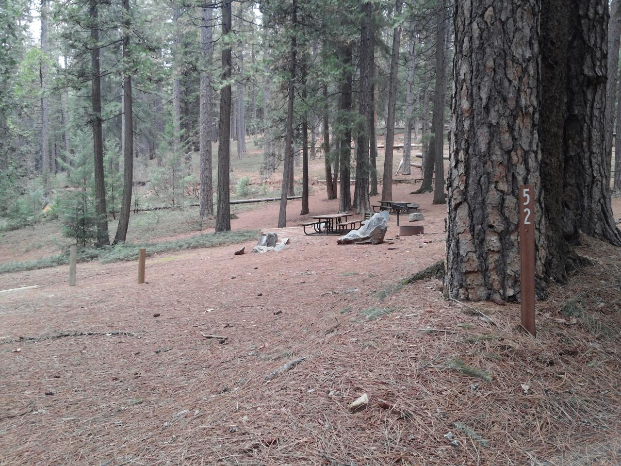 Sierra Spur site #52 - 2 vehicles, tent only - semi-shade, level