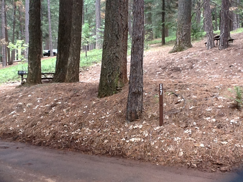 Sierra Spur site #57 - 2 vehicles, tent only - shade, level, walk-up