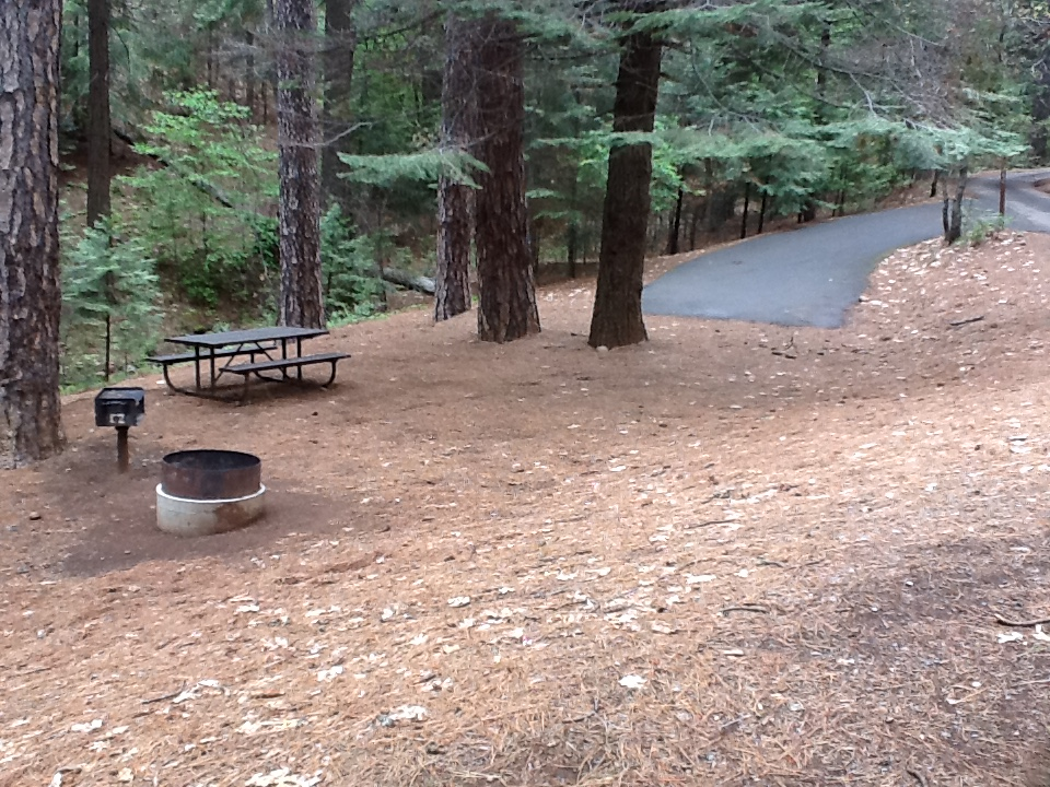 Sierra Spur site #62 - 2 vehicles, tent only - semi-shade, gentle slope