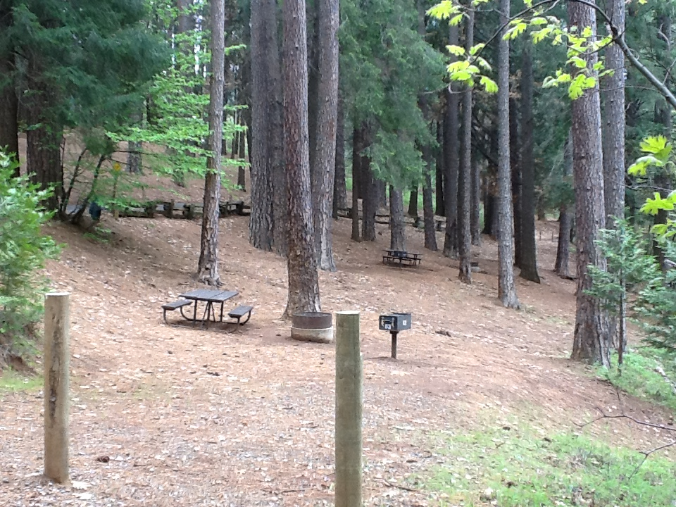 Sierra Spur site #63 - 2 vehicles, tent only - sun, gentle slope