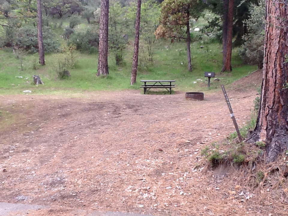 Chimney site #137 - 2 vehicles, tent only - sun, gentle slope