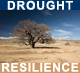 Ongoing Drought Resilience