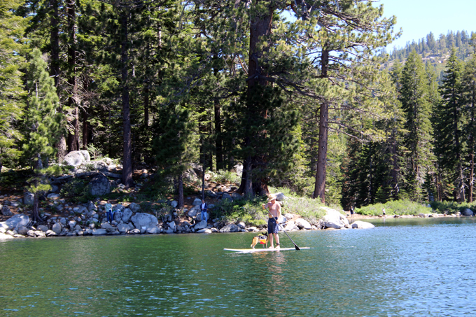 SilverLake-SUP-with-Dog
