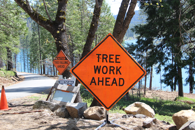 Image of Orange Sign Tree Work Ahead at Sly Park Recreation Area Due to-Logging Taken on 20170504 Beetle Infestation